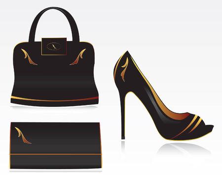 Fashion set-shoe wallet and bag Vector