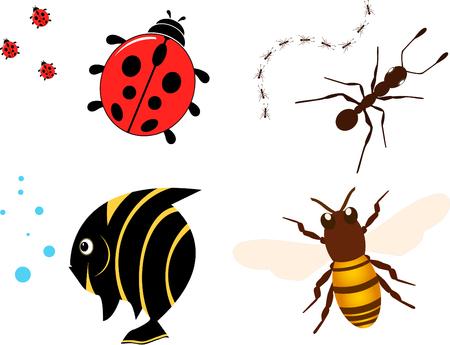 Vector icon set-Ladybug, fish, ant and bee icon