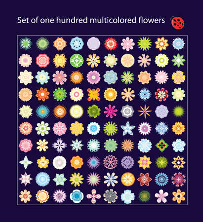 Set of one hundred multicolored flowers