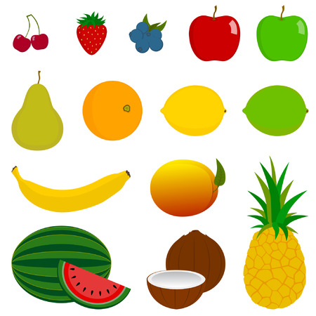 halved:  illustration of 14 various fruits