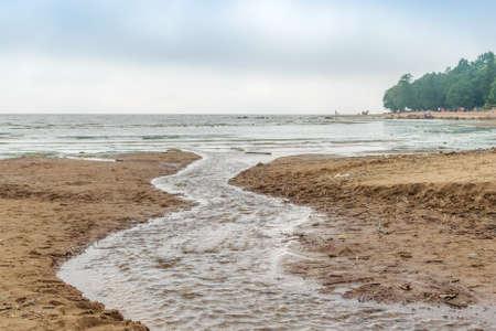 gloom: The Baltic sea beach in Repino, near St. Petersburg