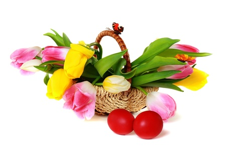 Easter eggs and a basket with colorful tulips isolated on white background.