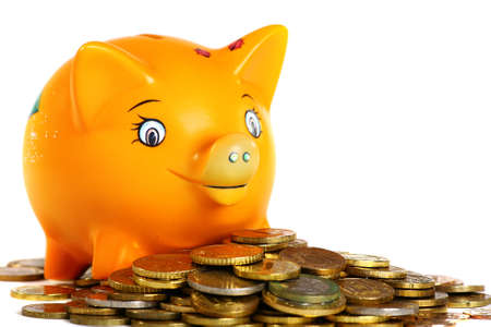 Lucky piggy bank isolated on white background.  Stock Photo - 9071659