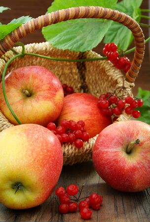 Basket of apples and viburnum on a wooden board. photo