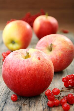 Red apples and viburnum on an old wooden board.  photo