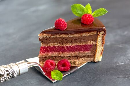 raspberry jelly: Chocolate cake with raspberry jelly on a shovel for cake.