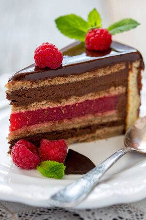 raspberry jelly: Piece of chocolate cake with raspberry jelly close up.