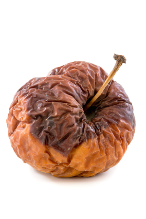 putrid: Wrinkled rotten apple on a white background.