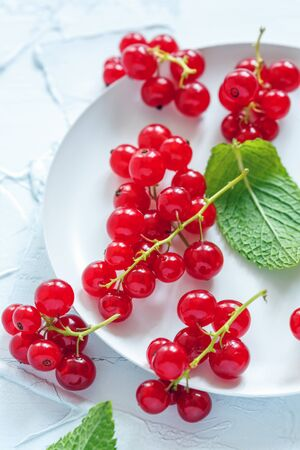 bunches: Plate with bunches of red currants on a white concrete background.