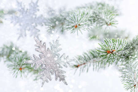 Silver snowflakes and snow-covered fir branches close-up, selective focus.