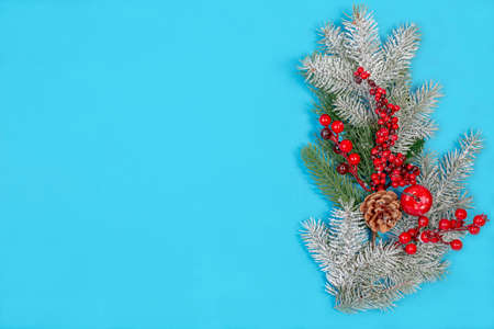 Christmas composition of snowy fir branches and red berries on a blue background. Winter festive nature concept. Flat lay, top view, copy space.