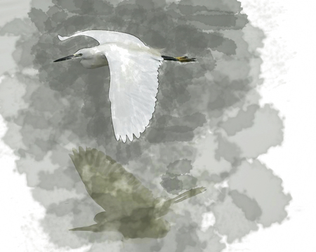 water color of bird. Stock Photo