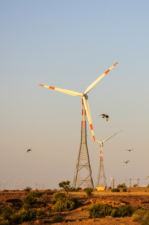 Electricity generating windmills in Indian Thar desert