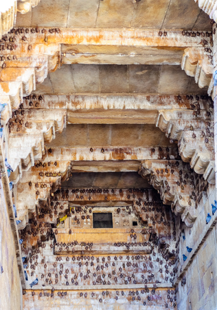 Bats and pigeons inside Golden Fort of Jaisalmer, Rajasthan India with copy space