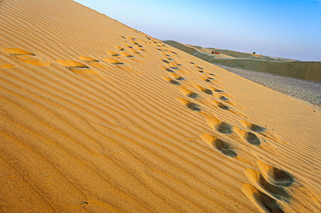 Footprints on Sand dune of Indian Thar Desert two camels sitting far away copy space