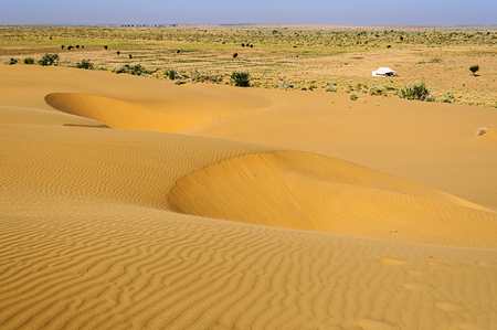 Sand dunes, white tent, SAM dunes, Desert National Park of Thar Desert of India with copy space