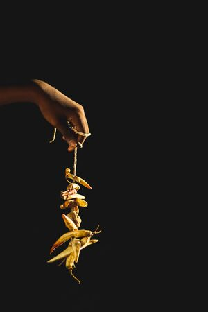 Lemon and red Chilies tied with thread and tied for hanging on human hand isolated on black background with copy space for text.
