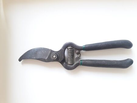 Pruning shears Old black handle But still able to use well Suitable for cutting small branches For the flexibility of decorating trees that are not very large Is safe to use Put on a white background.