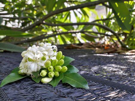 Murraya paniculata bouquet on the background blur. Stock fotó