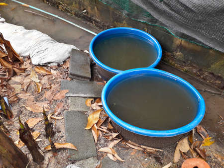 A blue plastic bowl with black water placed on the ground. Banco de Imagens