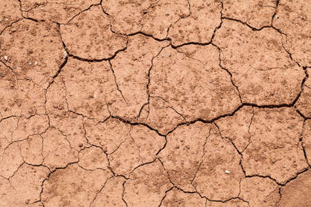 Dry soil background photo
