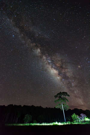 vulpecula: Milky Way at Phu Hin Rong Kla National Park,Phitsanulok Thailand