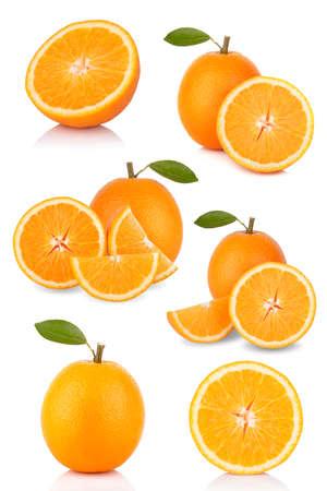 oranges collection photo