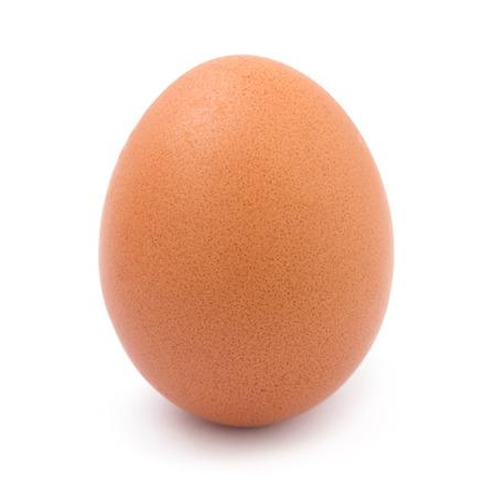 egg: egg