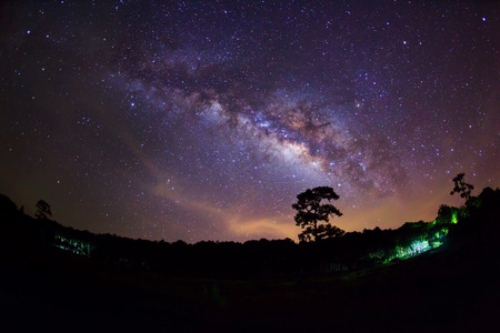 Silhouette of Tree and Milky Way with cloud photo