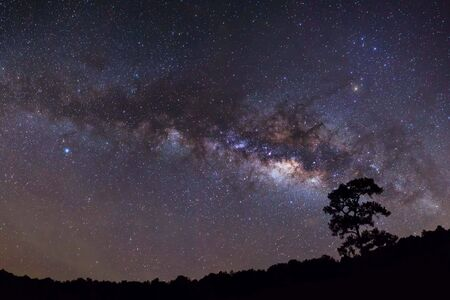 Panorama silhouette of Tree with cloud and Milky Way photo