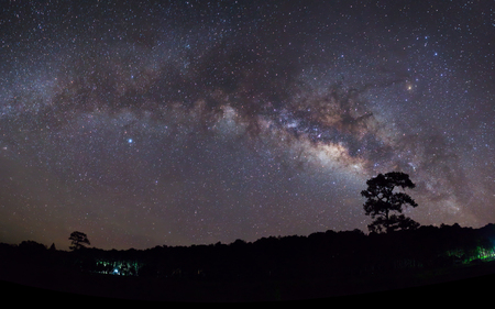 vulpecula: Panorama silhouette of Tree with cloud and Milky Way. Long exposure photograph.