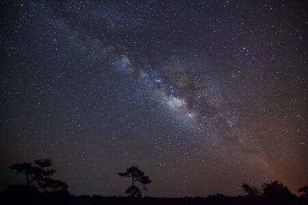 vulpecula: silhouette of Tree with cloud and Milky Way. Long exposure photograph.