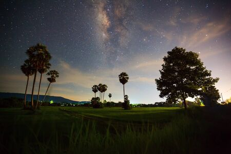 vulpecula: Silhouette of Tree with cloud and Milky Way, Long exposure photograph. Stock Photo