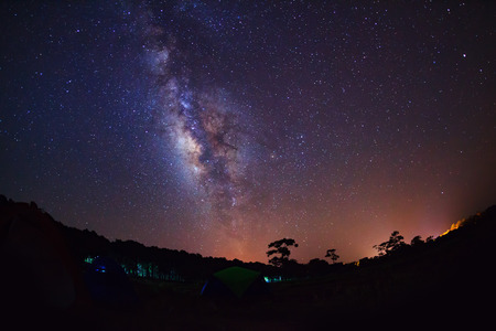 Silhouette of Tree and beautiful milkyway on a night sky, Long exposure photograph