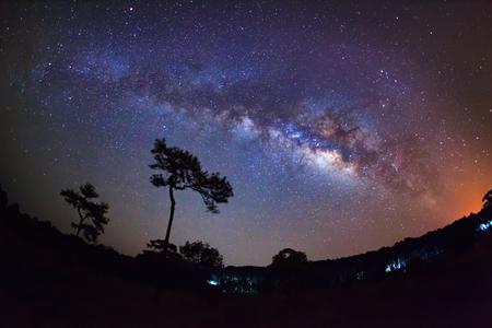 vulpecula: Silhouette of Tree and Milky Way at Phu Hin Rong Kla National Park,Phitsanulok Thailand. Long exposure photograph.