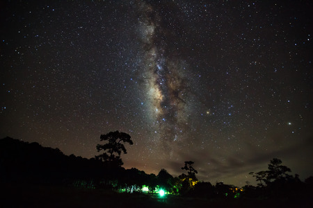 vulpecula: Silhouette of Tree with cloud and Milky Way at Phu Hin Rong Kla National Park,Phitsanulok Thailand. Long exposure photograph.with grain