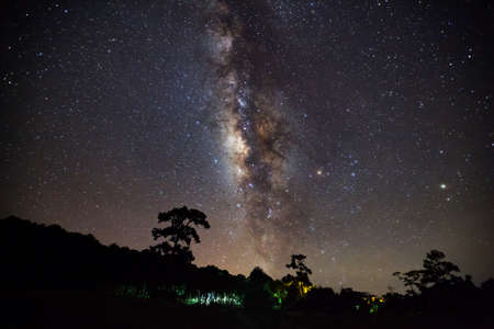 milkyway: Silhouette of tree and beautiful milkyway on a night sky. Long exposure photograph.with gain