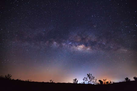 vulpecula: Milky Way Galaxy and Silhouette of Tree.Long exposure photograph.With grain