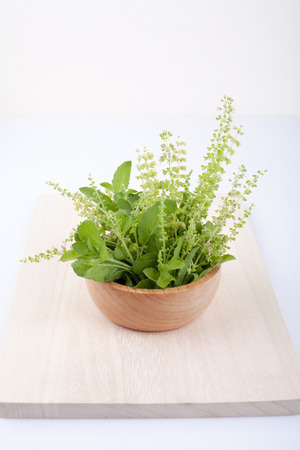 admixture: part of holy basil pile on cutting board Stock Photo