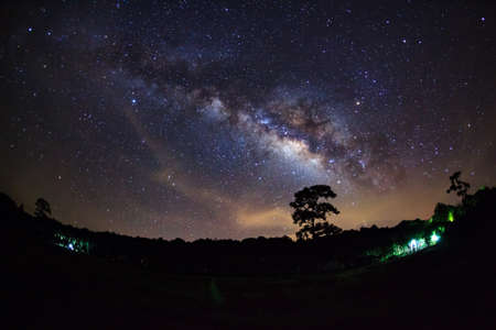 vulpecula: Beautiful milky way galaxy on a night sky and silhouette of tree with cloud, Long exposure photograph.with grain