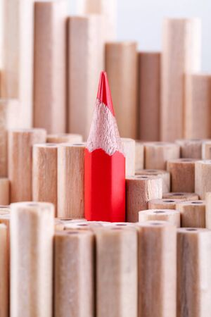among: One sharpened red pencil among many ones