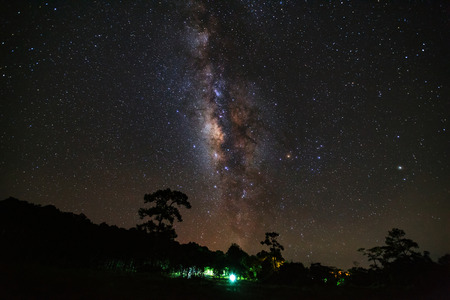 milkyway: Silhouette of tree and beautiful milkyway on a night sky, Long exposure photograph, with grain