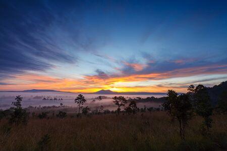 Misty morning sunrise at Thung Salang Luang National Park Phetchabun,Thailand