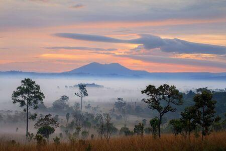 Misty morning sunrise at Thung Salang Luang National Park Phetchabun,Tung slang luang is Grassland savannah in Thailand
