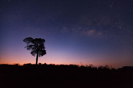 Beautiful milky way and silhouette of tree on a night sky before sunrise