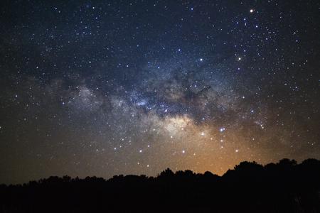 Silhouette of pine tree and Milky way  galaxy at Phu Hin Rong Kla National Park,Phitsanulok Thailand