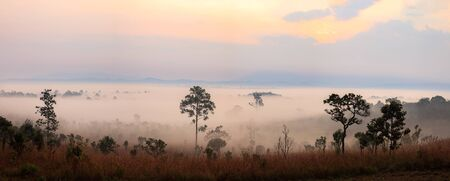 Panorama Landscape fog in morning sunrise at Thung Salang Luang National Park Phetchabun,Tung slang luang is Grassland savannah in Thailand