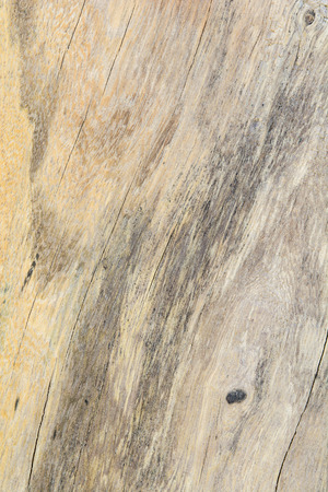 brown wooden texture Stock Photo - 101876241