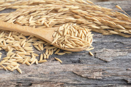 Grain and rice on wood table
