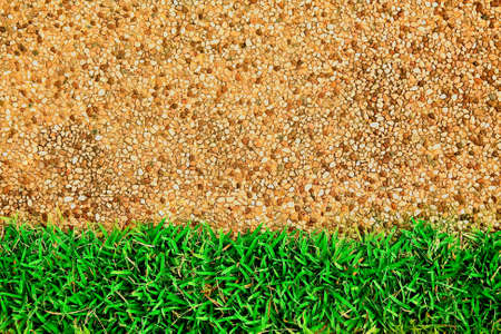 Green grass on sand texture Stock Photo - 9408165